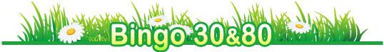 Bingo 30 & 80